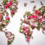 Цветочная карта