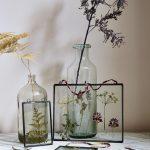 Композиция из различных гербариев на столе