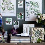 Композиция из разных форм гербариев и бытовых вещей