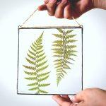 Листья папоротника в стекле