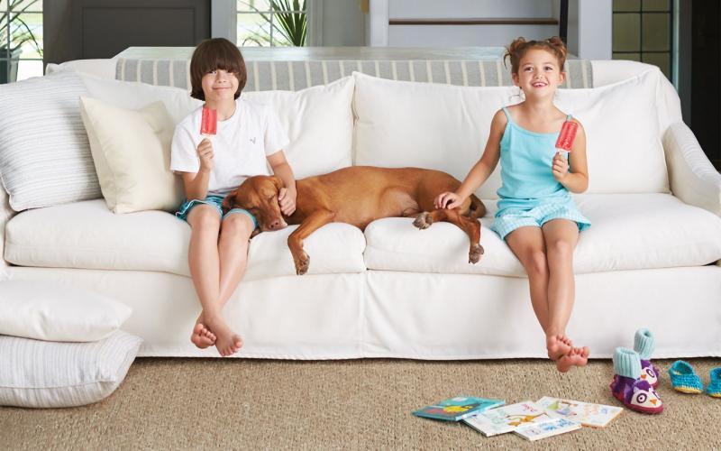 Все правила чистки мягкой мебели в вопросах и ответах