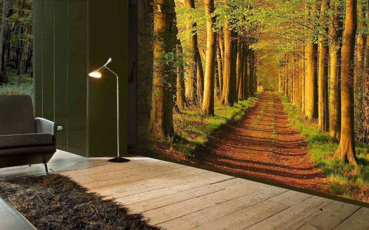 Картинки с перспективой леса