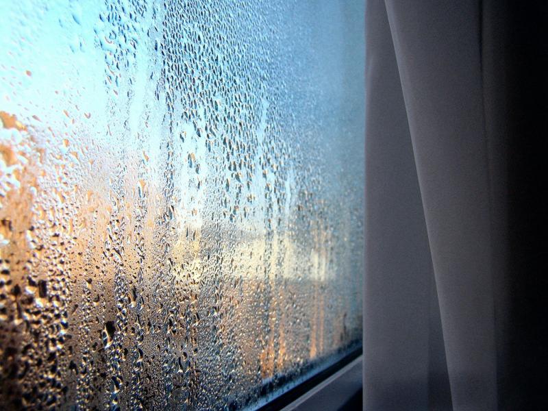 «Оконные слёзы» — конденсат на стёклах и как от него избавиться