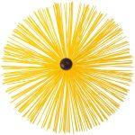 Жёлтый ёрш
