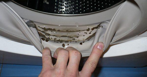 Грязь в манжете стиральной машинки