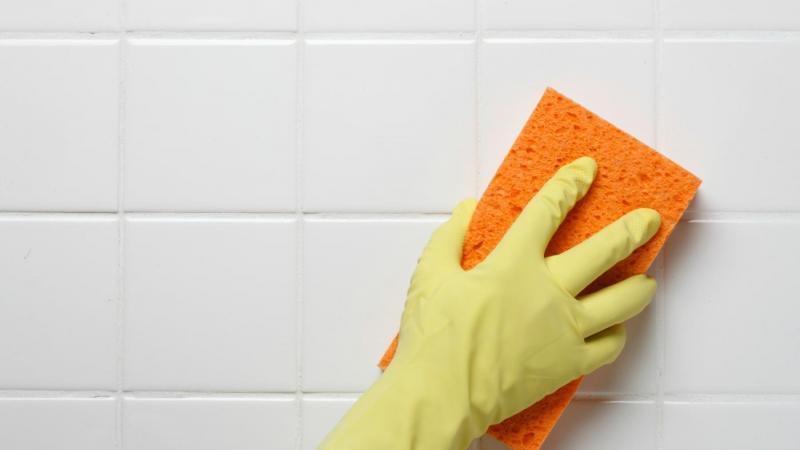 Очистка межплиточных швов в ванной от плесени: как избавиться от опасного соседства