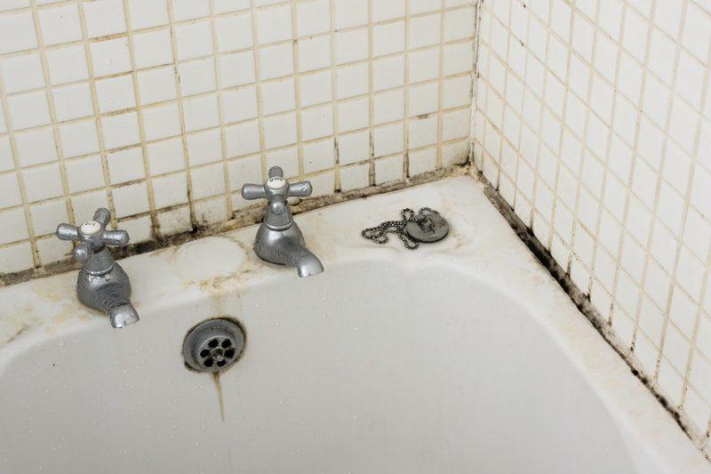 Плесень в ванной комнате — бороться или смириться